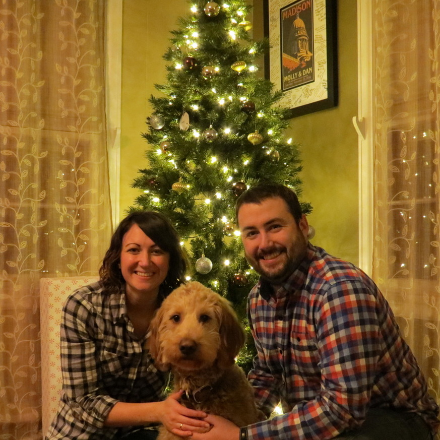 calvin is the best puppy he loves to snuggle take long walks play in the snow and play at the dog park he loves people and other dogs - Goldendoodle Christmas Decorations